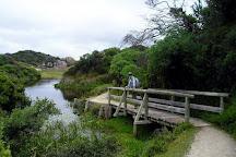 Agnes Falls, Hazel Park, Australia