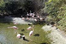 Tierpark Herborn, Herborn, Germany