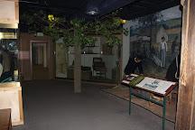 National Museum of Civil War Medicine, Frederick, United States
