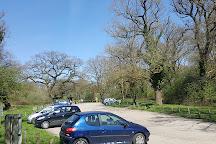 Great Bookham Common, Great Bookham, United Kingdom