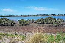 Fisher's Wetland, Newhaven, Australia
