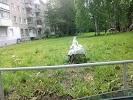 Магнит, Стахановская улица, дом 18 на фото Перми