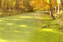 Nomahegan Park, Cranford, United States