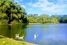 Areiao Park