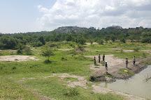 Lake Mburo National Park, Mbarara, Uganda