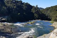 Whangarei Falls, Whangarei, New Zealand
