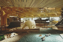Svalbard Museum, Longyearbyen, Norway