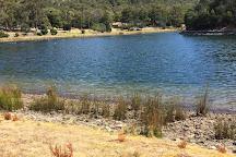 Waterworks Reserve, Hobart, Australia