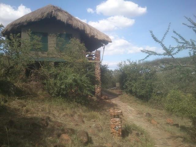 Grumeti Migration Camp