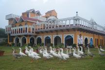 Banni Khera Farm, Rohtak, India