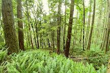 Ainsworth State Park, Portland, United States