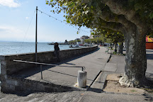 Musee Alexis Forel, Morges, Switzerland