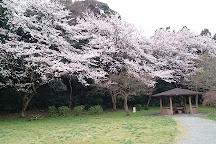 Hanawajoshi Park, Nagareyama, Japan
