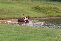 Monongahela National Forest, West Virginia, United States