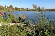 els estanys d'Almenara, Almenara, Spain