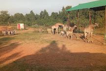 Bangabandhu Safari Park, Gazipur, Bangladesh