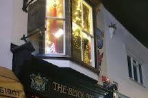 The Black Dog, Whitstable, United Kingdom