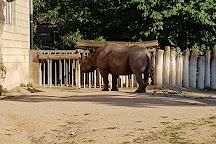 Frankfurt Zoo (Zoologischer Garten Frankfurt/Main), Frankfurt, Germany