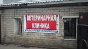 """Ветеринарная клиника ИП """"Ашуркова И.В."""", улица Керегетас, дом 50 на фото Астаны"""