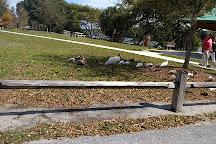 Lake Ida Dog Park, Delray Beach, United States