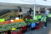 Dupont Circle FreshFarm Market, Washington DC, United States