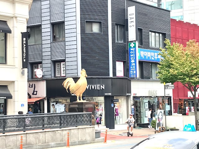Chuncheon Dakgalbi Street