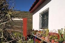 Bodega Los Lirios, Las Palmas de Gran Canaria, Spain