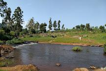 Mount Elgon National Park, Eastern Region, Uganda