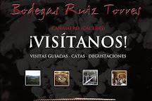Bodegas Ruiz Torres, Canamero, Spain