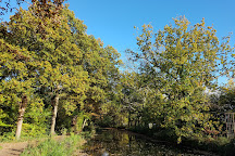 Visit Basingstoke Canal on your trip to Mytchett