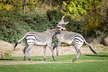 Zoo de Lyon, Lyon, France