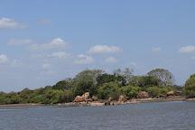 Kokkilai Sanctuary, Mullaitivu District, Sri Lanka