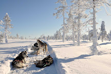 Kota-Husky, Posio, Finland