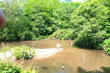 Tehidy Country Park, Camborne, United Kingdom