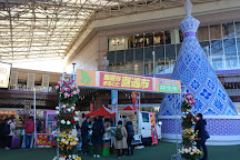 Amu Plaza Kagoshima, Kagoshima, Japan