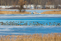 Mendon Ponds Park, Pittsford, United States