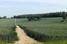 North Downs Way National Trail, Farnham, United Kingdom