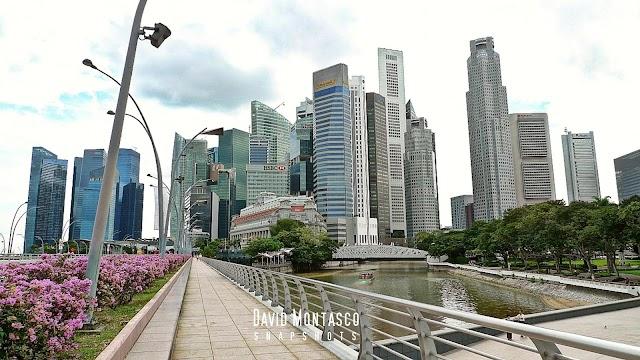 Singapore Biennale: The Merlion Hotel