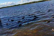 Cobb's Pond Rotary Park, Gander, Canada