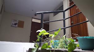 Alquiler de habitaciones en San Martín de Porres, Lima y Callao - Aldani Bienes Raices 8