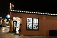 Metalartz Gallery, St. Augustine, United States