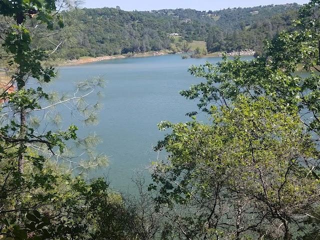 Avery's Pond Trailhead