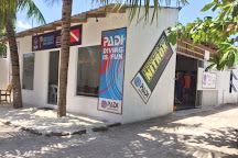 Arena Dive Club, Maafushi Town, Maldives