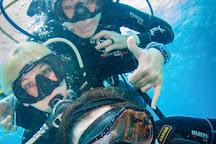 Aquapro Dive Center, Bitez, Turkey