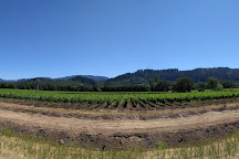 Titus Vineyards, St. Helena, United States