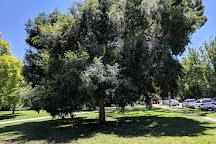 Rockley Gardens, Toorak, Australia