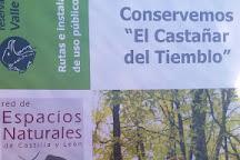 El Castanar de El Tiemblo, El Tiemblo, Spain