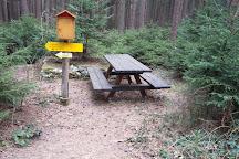Naturpark Heidereichsteiner Moor, Heidenreichstein, Austria