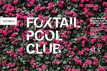 Foxtail Nightclub, Las Vegas, United States