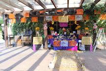 L.A. Cetto, Valle de Guadalupe, Mexico